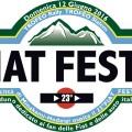 23° FIAT FESTA 2016